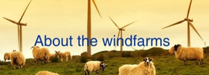 about the windfarms